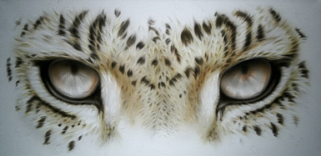 Leopard Eyes :: Adam Scott  Rote